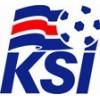 Island VM Tröja