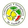 Senegal VM Tröja