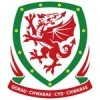 Wales Tröja